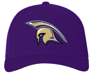Hat Spartan Purple